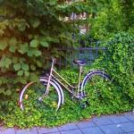 Ein mit Efeu überwachsenes Fahrrad.